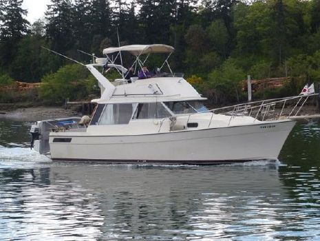 1980 Bayliner 3270 Profile