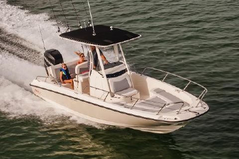 2017 Boston Whaler 240 Dauntless Manufacturer Provided Image