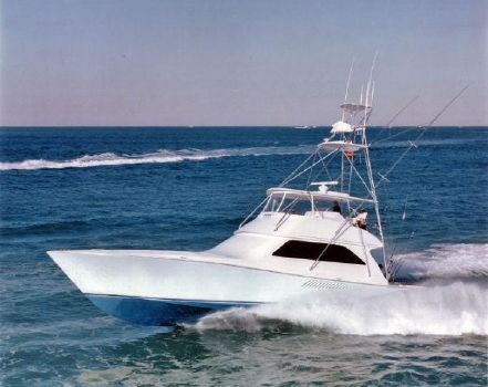 2001 Viking 61 Convertible Profile