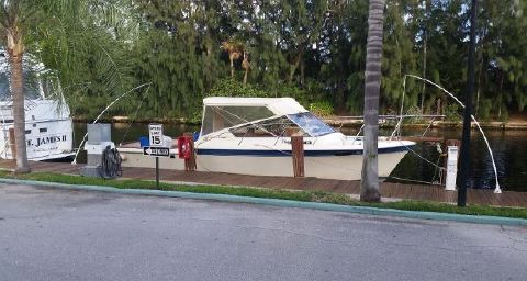1984 CHRIS - CRAFT 316 Commander