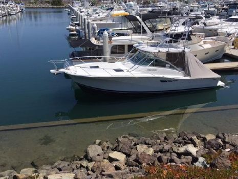 1997 Luhrs Express Cruiser
