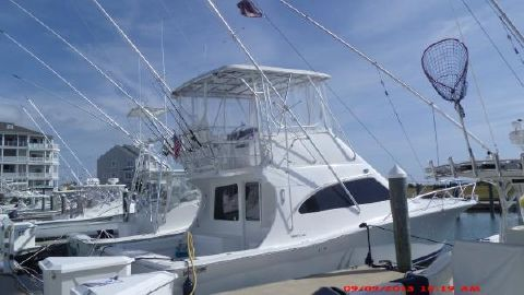 2006 Luhrs 36 Convertible Profile