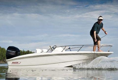 2015 Boston Whaler 150 Super Sport