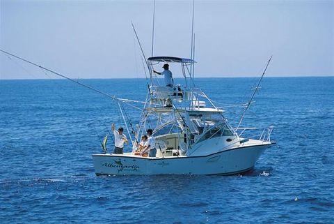 2005 Albemarle 320 Express Fisherman Profile