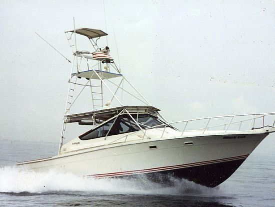 1987 Blackfin Combi Sport Fisher (FMC)