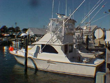 1978 Bertram Sport Fisherman