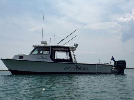 1989 C-hawk Boats 29 Pilot