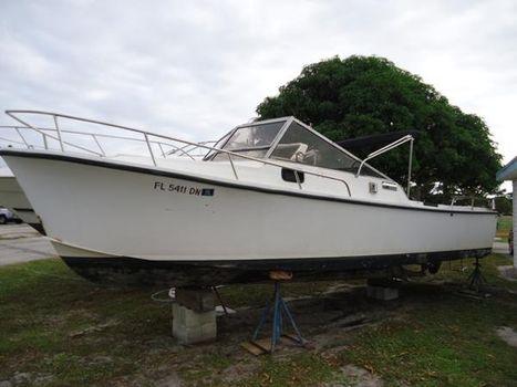 1984 Shamrock 260 Cuddy