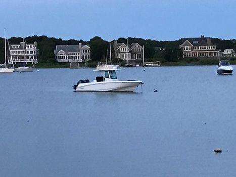 2014 Boston Whaler 320 Outrage BW Profile.jpg