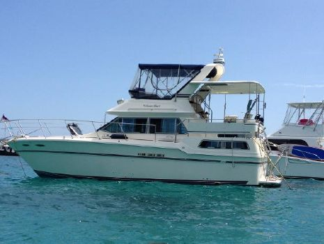 1985 Sea Ray 360 AFT CABIN MOTORYACHT 36' Sea Ray