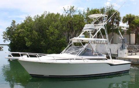 1995 Blackfin 31 Combi