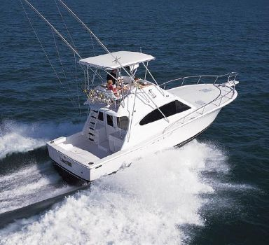 2001 Luhrs 40 Convertible Manufacturer Provided Image