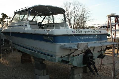 1988 Bayliner Trophy