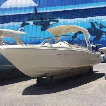 2016 Scout Boat Company 245 Dorado