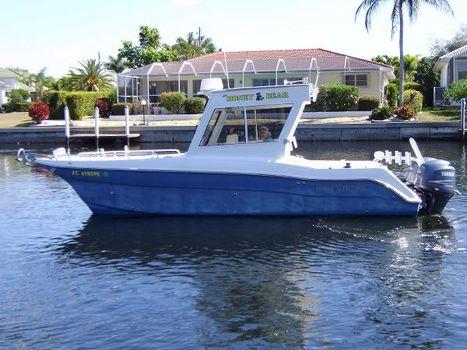 2011 Gulf Stream/ProKat 25 DC
