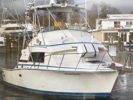 1982 Bertram 33 Sportfish Flybridge