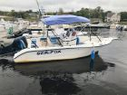 2001 Sea Fox 210 Center Console