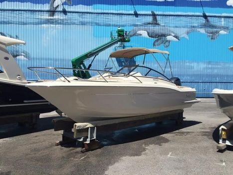 2016 Scout Boats 225 Dorado