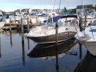 2009 SEA RAY 260 Sundeck