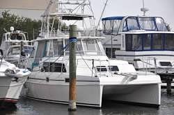2000 Endeavour 36 Trawler Cat