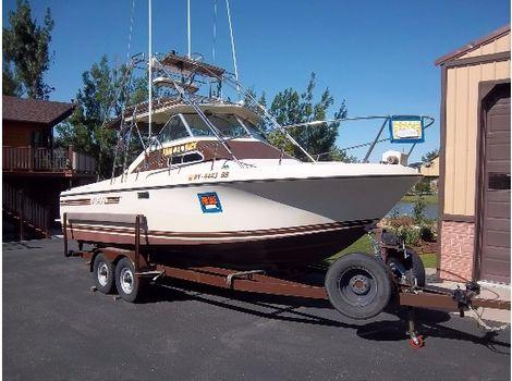 1981 Skipjack 25ft sportfish with tower