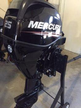 2015 Mercury 25 hp EFI