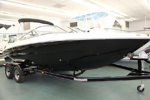 2016 Stingray 225 LR