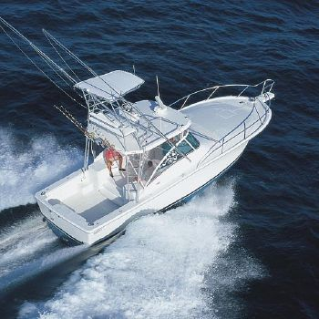 2004 Luhrs 36 Open Manufacturer Provided Image