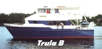 2003 Custom Tri Cat Marine