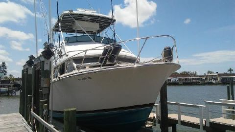1980 BERTRAM 33 Sport Fisherman
