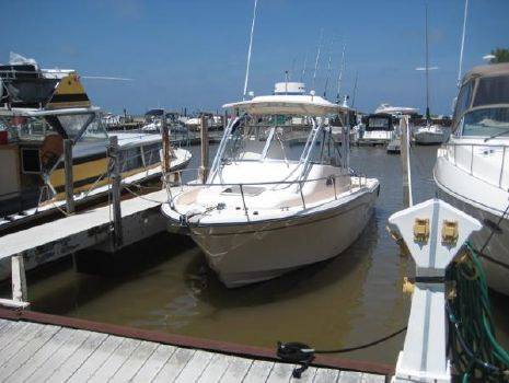 2009 Grady-White 290 Chesapeake