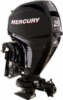 2017 Mercury 25 Elpt