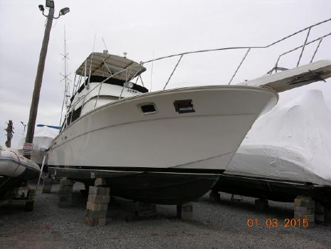 1988 Luhrs Tournament 400