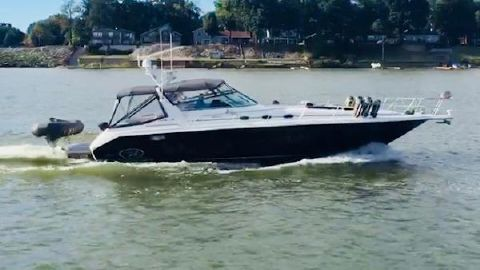 1995 Sea Ray 440 SUNDANCER Freedom Lift