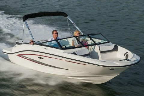 2016 Sea Ray 19 SPX Manufacturer Provided Image
