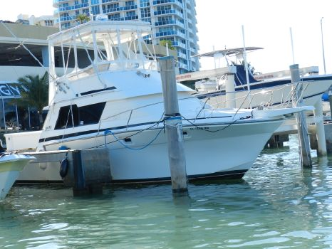 1991 Luhrs 342 Convertible Tournament