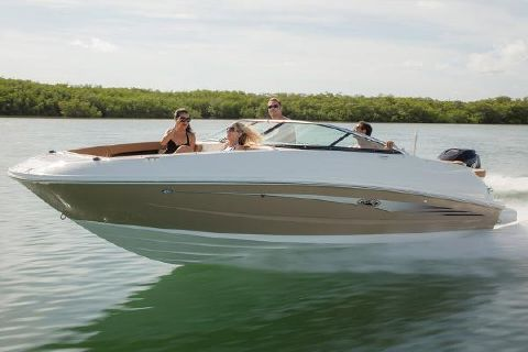 2016 Sea Ray 240 Sundeck Outboard Manufacturer Provided Image