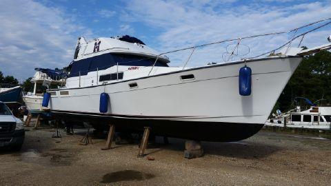1989 Bayliner Motoryacht 38