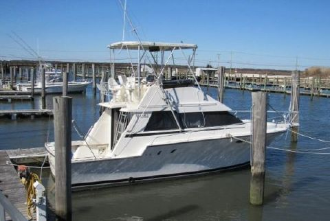 1992 Luhrs 3420 Express Profile