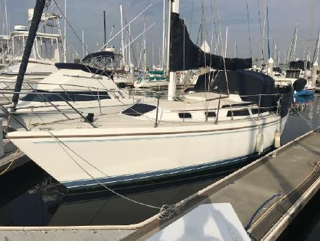 1988 Catalina Sloop View from port bow