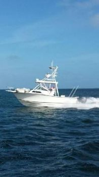 1989 Grady-White 2500 Sailfish
