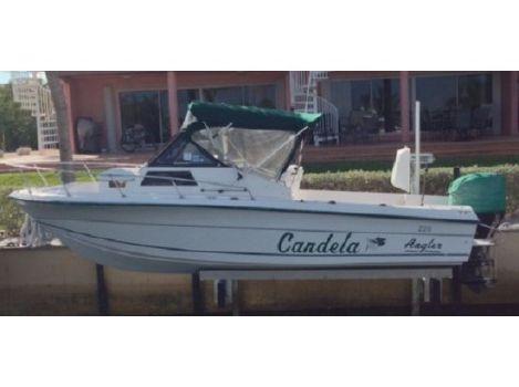1996 Angler Boats 220wa