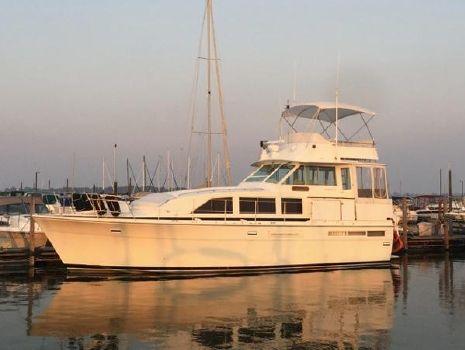 1987 Bertram 42 Motor Yacht