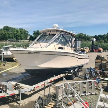 2009 GRADY - WHITE 290 Chesapeake