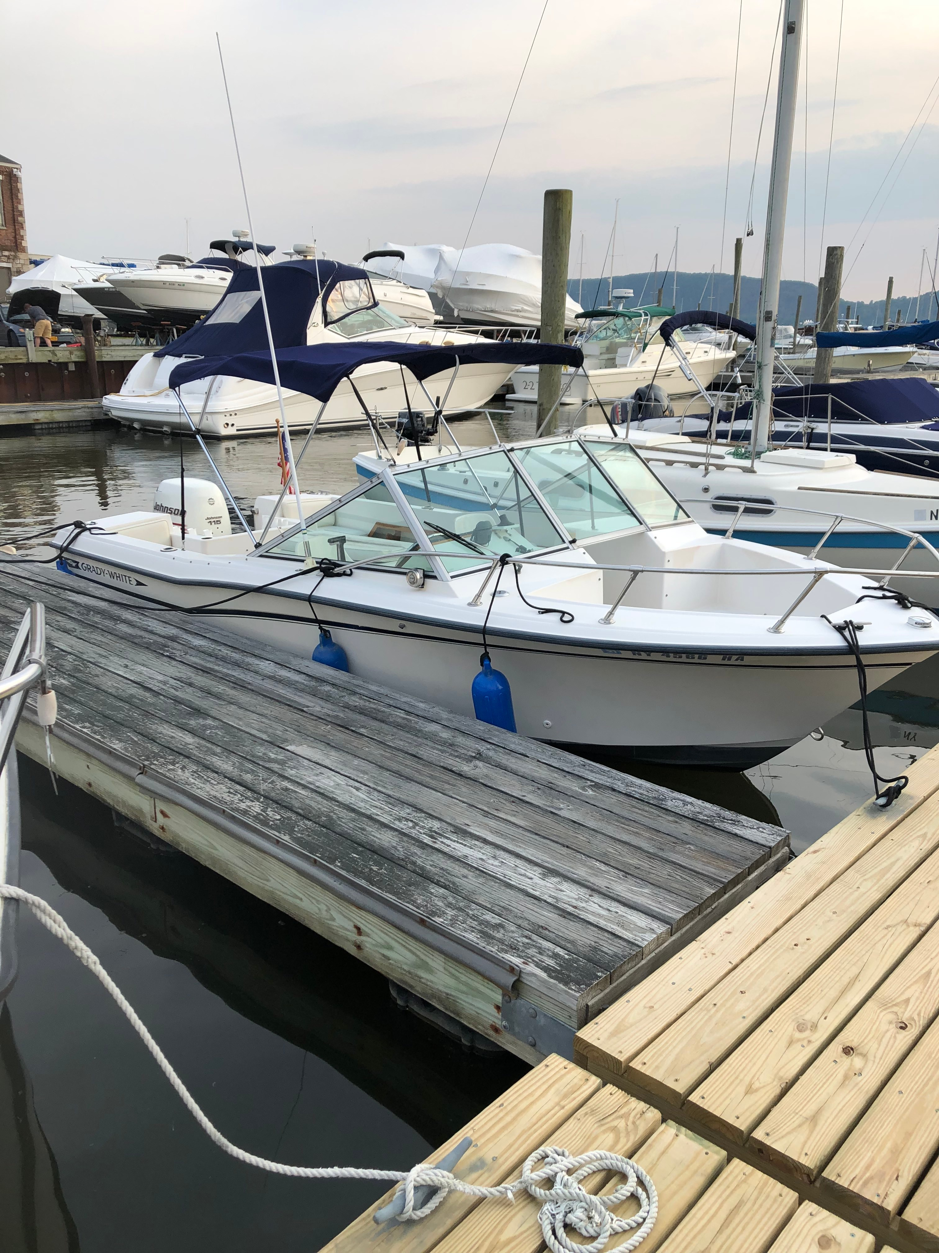 Check out this 1984 GRADY - WHITE 190 Tournament on Boattrader com