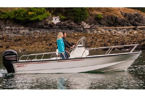 2017 Boston Whaler 190 Montauk Manufacturer Provided Image