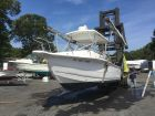 2005 SEA-PRO 220 Walk Around