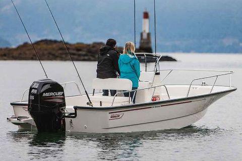 2018 Boston Whaler 190 Montauk Manufacturer Provided Image