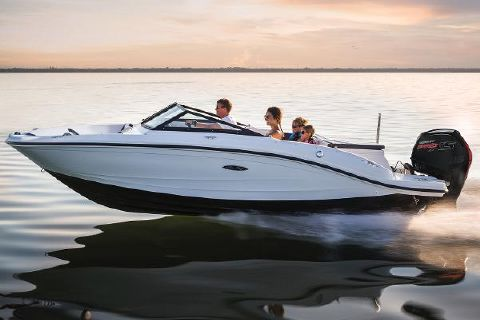 2017 Sea Ray 19 SPX Outboard Manufacturer Provided Image